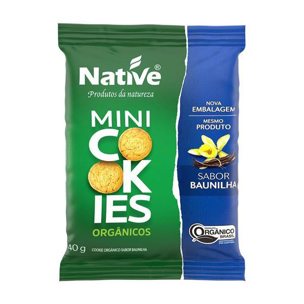 Mini Cookies Aveia e Mel Orgânicos 40g - Native