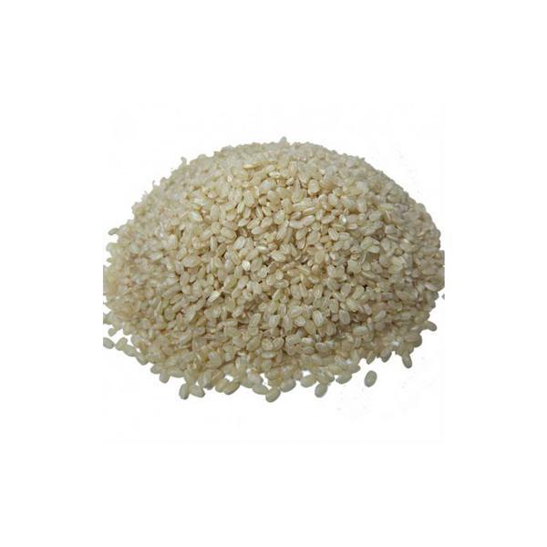 Arroz cateto branco agroecológico 1kg - Wylogus