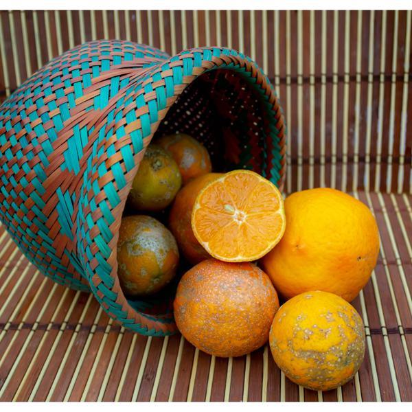 Limão galego (cravo, rosa, capeta) orgânico - 700g