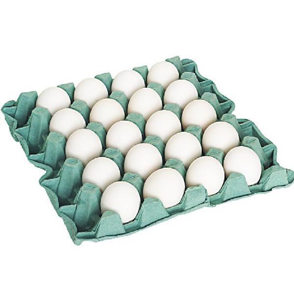 Ovos Branco LOYOLA Bandeja com 20 Unidades