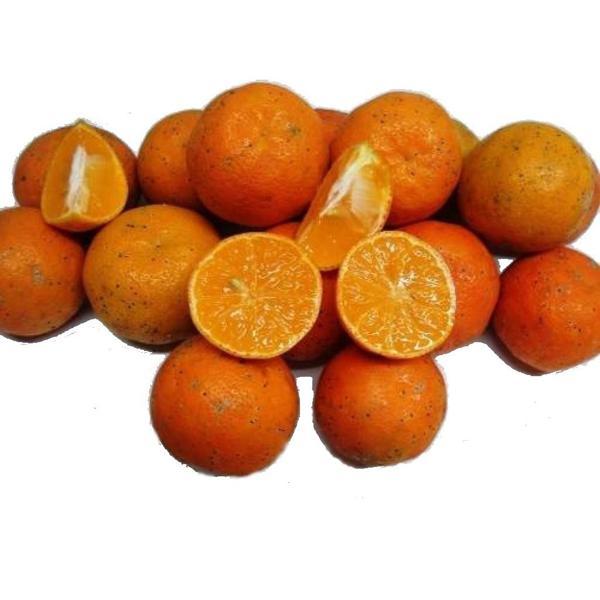 Limão Cravo 500g
