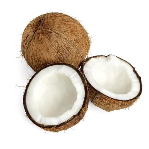 Coco Seco Orgânico (500g)