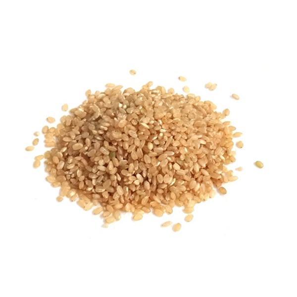 Arroz Cateto Agroecológico 1kg - Wylogus