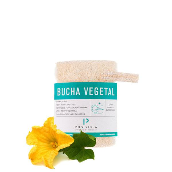 Bucha vegetal - Positiva