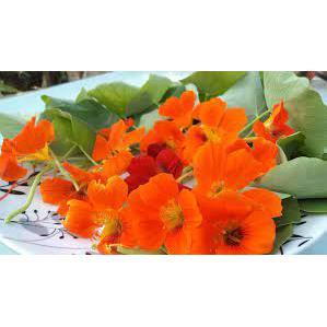Flor Comestivel 20G