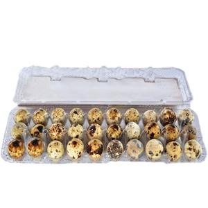 Ovos de Codorna YABUTA Com 30 Unidades