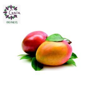 Mangar Palmer Orgânica - Pacote com 3 unidades