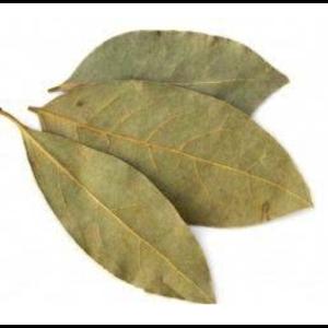 Folha de Louro Orgânica (aprox. 15 folhas)