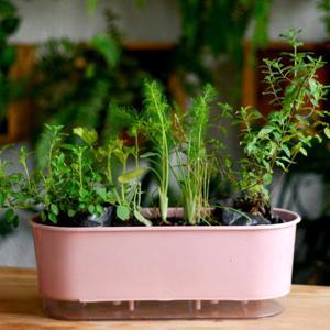 Jardineira Auto-irrigáve 45cm x 15cm x 15cm altura - Fábrica de Hortas