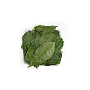Ora-pro-nóbis Agroecológico (molho)