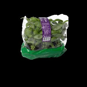 Salada Viva Manjericão Ou Basilicão