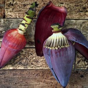 Coração da banana orgânica