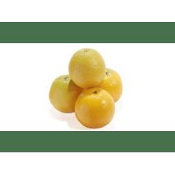 Limão Galego Orgânico PROMOÇÃO 1kg - Vista Alegre