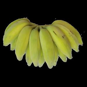 Banana Prata Mineira Orgânica