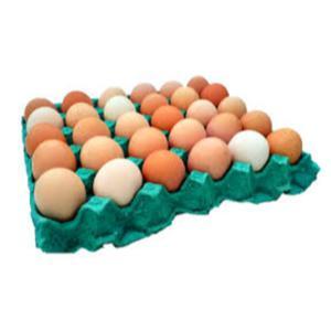 Ovo caipira - pente com 30 ovos - da Lili