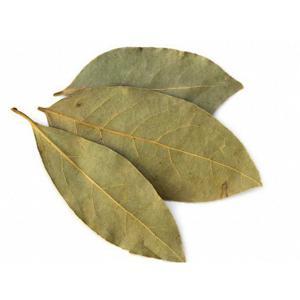 Folhas de louro - 50 g