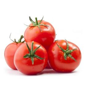 Tomate Extra Orgânico MOA 300g