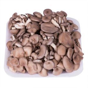 Cogumelo Shimeji Orgânico Bandeja