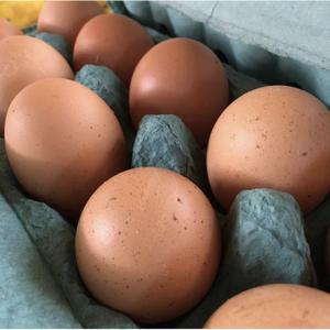 Ovos orgânicos Duzia