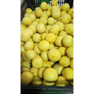 Limão galego (400g)