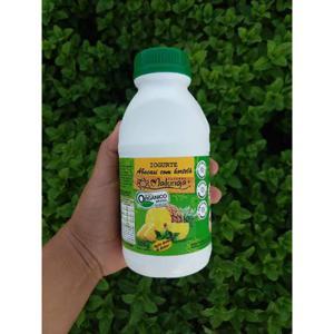 Iogurte Abacaxi com Hortelã (500ml)
