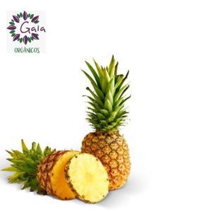 Abacaxi Orgânico - Unidade
