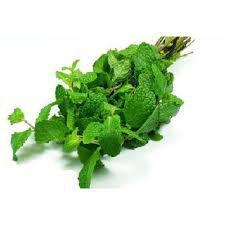 Hortelã Miúdo orgânico (250g)