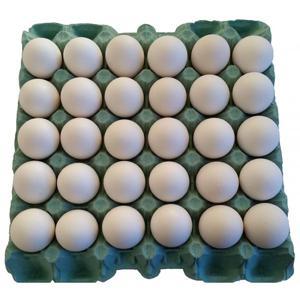Ovos Brancos JOSIDITH Bandeja com 30 Unidades