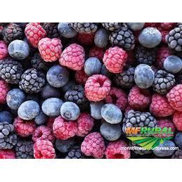 Frutas Vermelhas Congeladas Agroecológicas - Aprox.250g