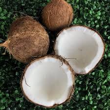 Coco seco (KG) Orgânico