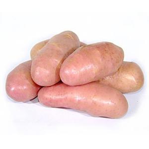 Batata Asterix (kg) - similar a inglesa