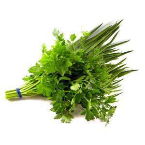 Cheiro Verde Com Salsa Maço