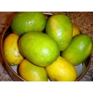 Limão Siciliano cumprido (KG) Orgânico