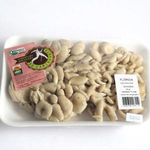 Cogumelo Flórida Orgânico 200g - DoCaminhante