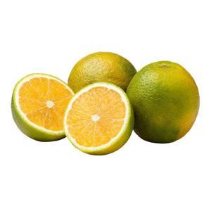 Laranja pera orgânica (kg)