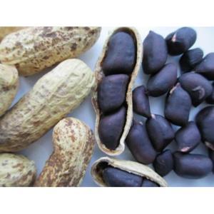 Amendoim preto agroecológico com casca (250g)