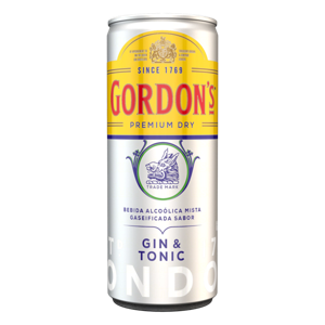 Gin com Tônica Gordon's 269Ml
