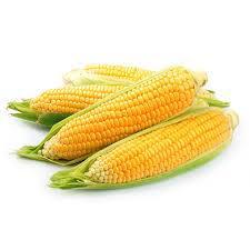 Milho Verde (kg)