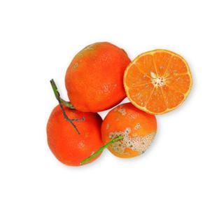 Limão Cravo (500g)