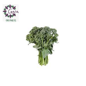 Brócolis Ramoso Orgânico