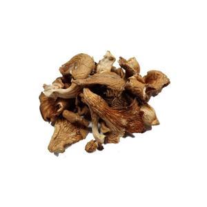Cogumelo Shimeji desidratado - 30g