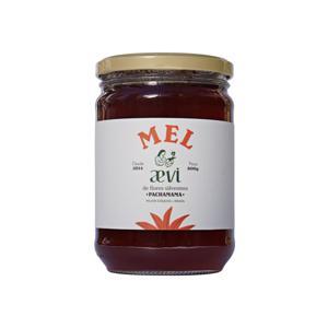 Mel Agroecológico Florada silvestre 800g - Mel Aevi