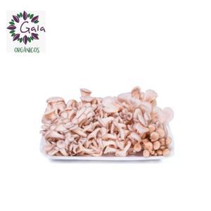 Cogumelo Shimeji branco Orgânico - bandeja 150g