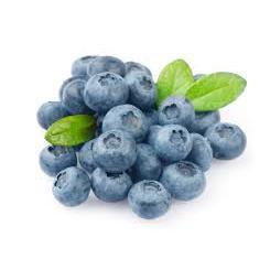 Blueberry Desidratada 100g INATTUS