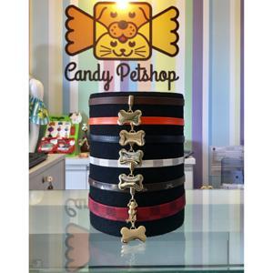 Coleira Candy com Placa de Identificação
