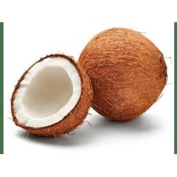 Coco seco orgânico und - Vista Alegre