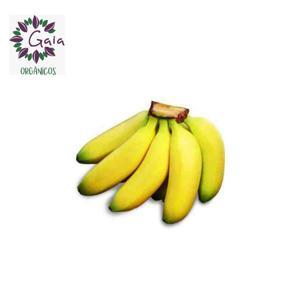 Banana Praçã (Prata c/maçã) - Penca c/10 unidades