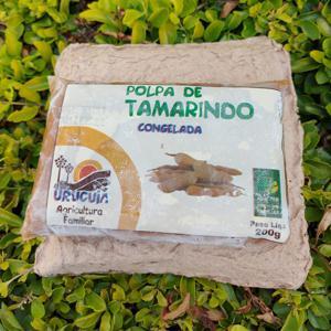 Polpa de Tamarindo (200g)