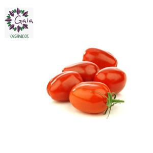 Tomate Italiano Orgânico 1kg