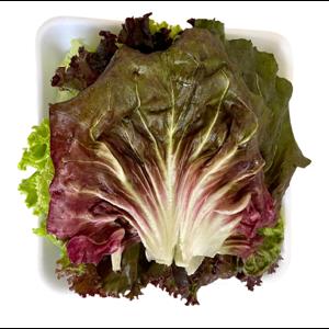 Salada Mix Fito 200g